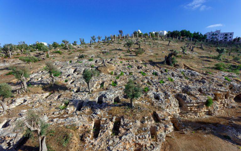 Panoràmica d'un sector de la necròpolis de Puig des Molins, amb les obertures dels hipogeus (Foto Raymar, Arxiu MAEF).