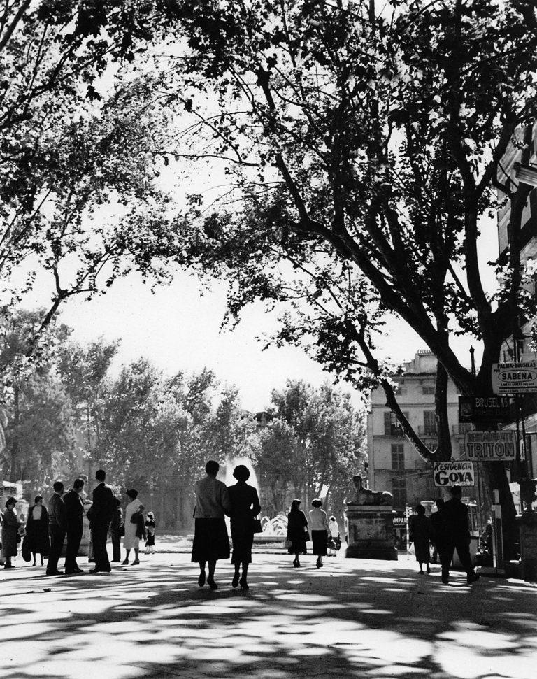 Passeig del Born de Palma