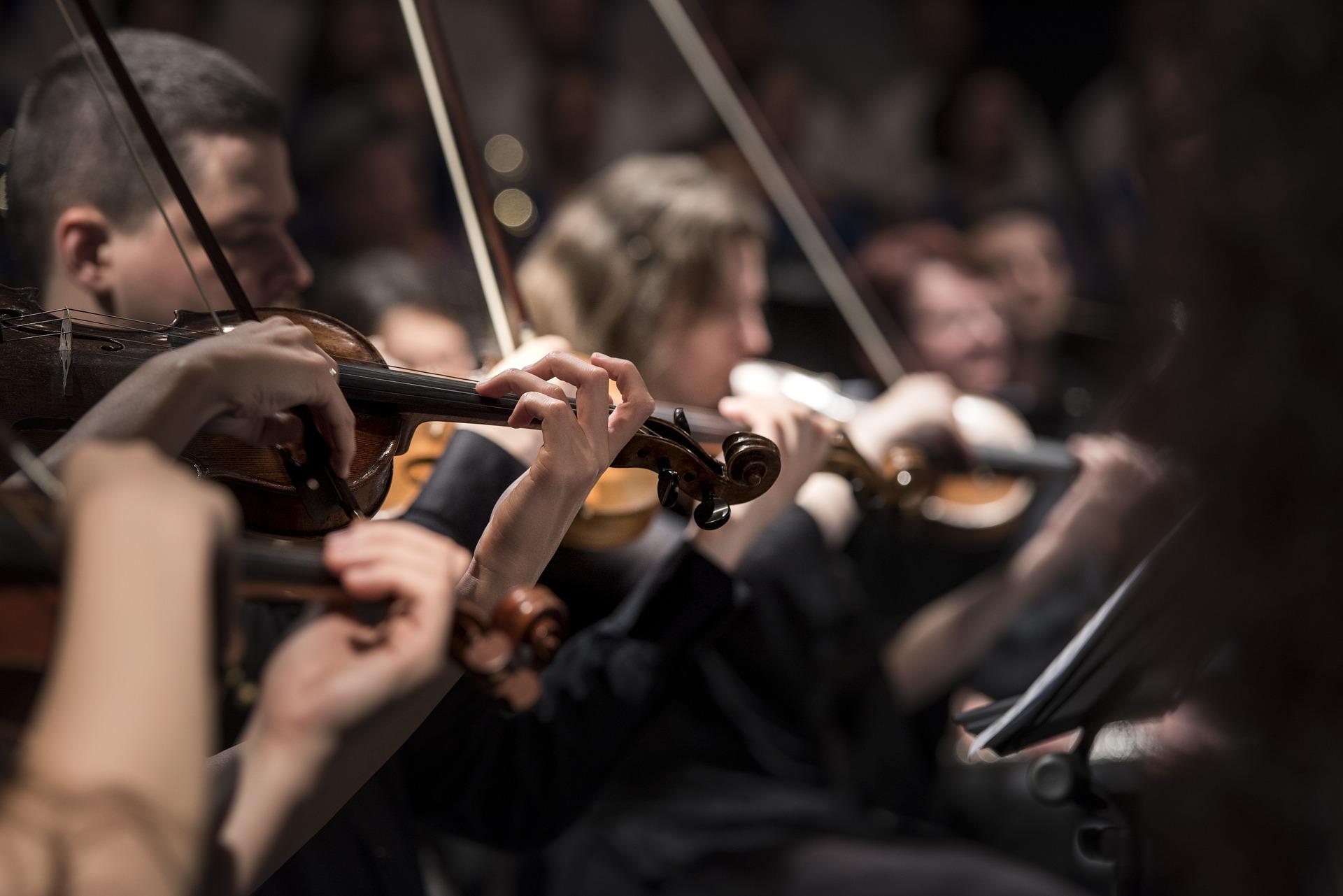 Una orquestra simfònica en acció              | Pixabay