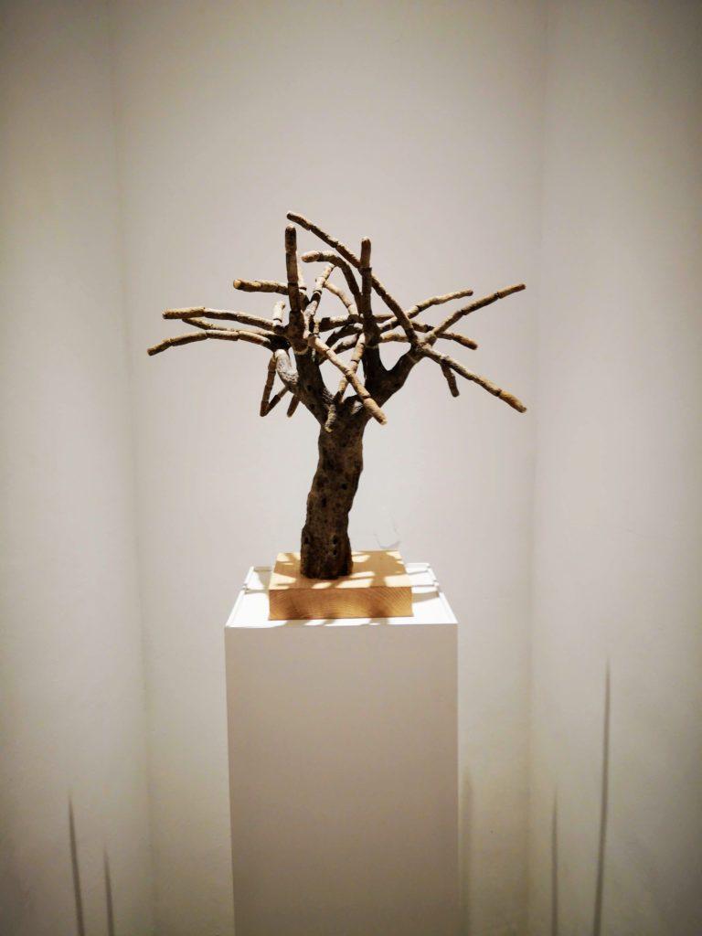 Obra d'Andreu Maimó