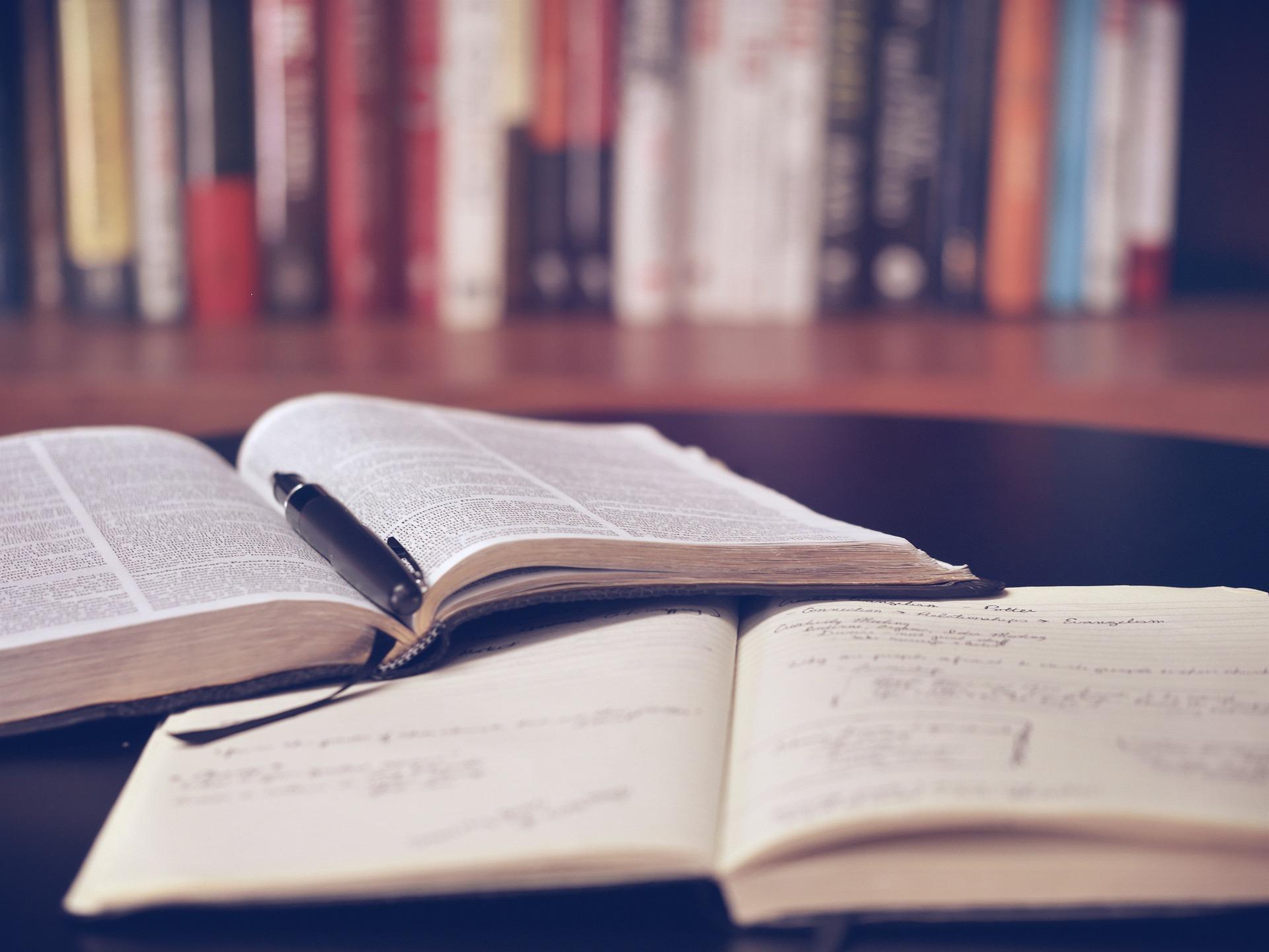 Mostrador de llibres, la tria setmanal amb l'art com a protagonista