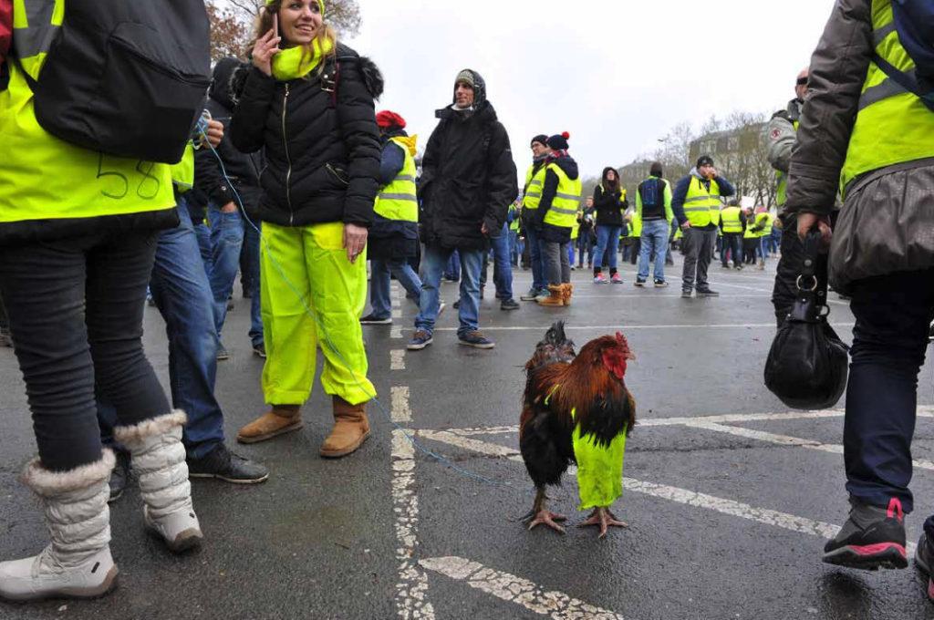 """Humor a la revolta de les """"armilles grogues"""", a París // ÉRIC HADJ / PARIS MATCH"""