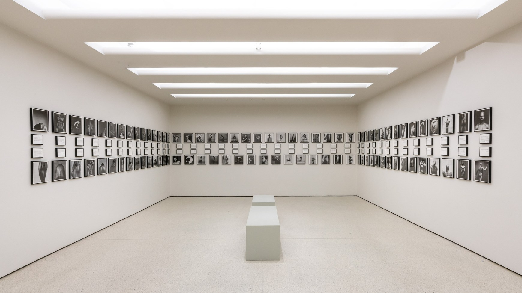 "Imatge de sala de ""Mapplethorpe: implicit tensions"""