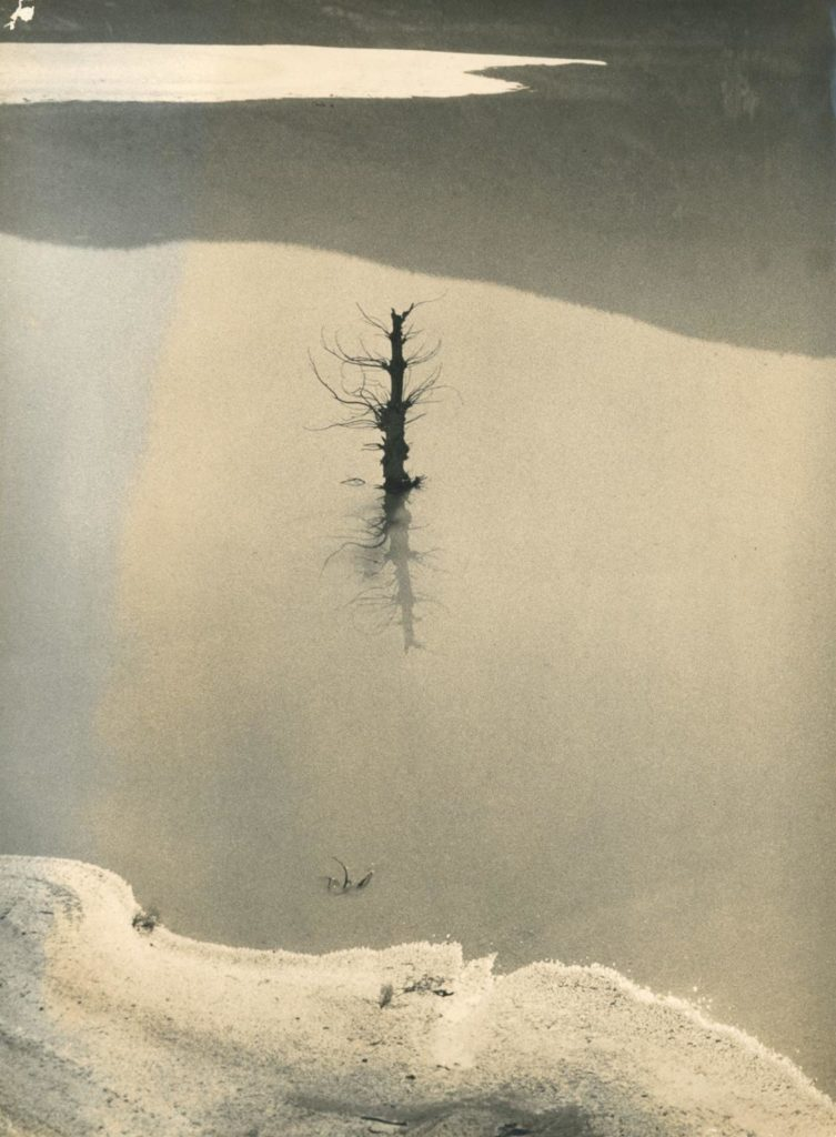 Enchente, de Palmira Puig, c. 1950.