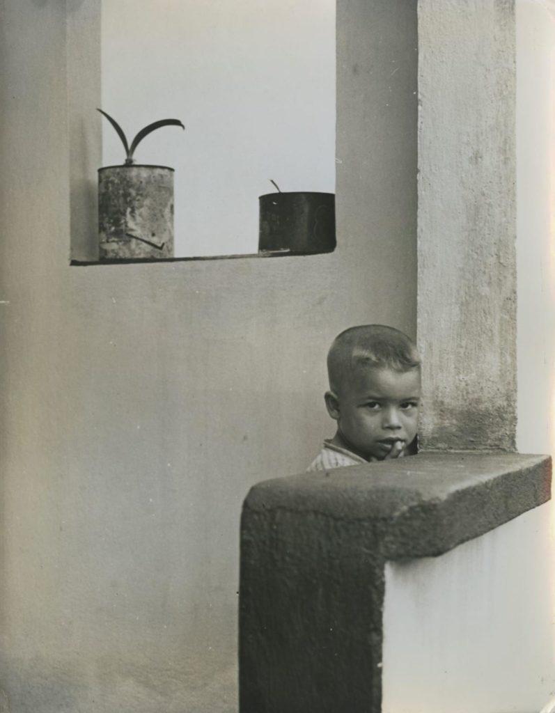 Desconfiado, de Palmira Puig, c. 1950.