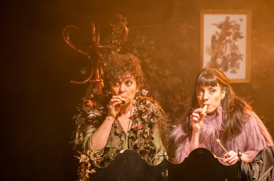 Glòria Garcés i Elena Martinell a 'Plomes i reclams'